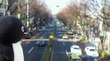 20130224-表参道
