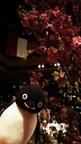20130323-丸の内 Sakura Cafe (1)-加工
