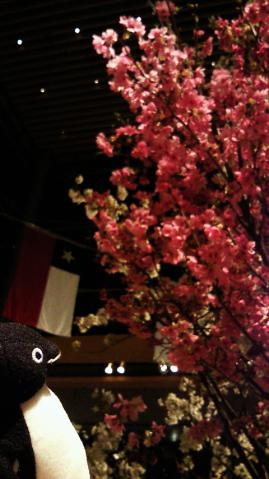 20130323-丸の内 Sakura Cafe (11)-加工