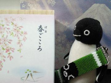 20130327-みすずさんプレゼント(11)