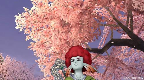 自宅・桜<加工済み>