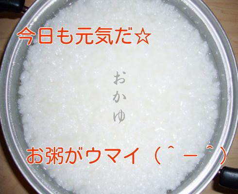 お粥<加工済み>