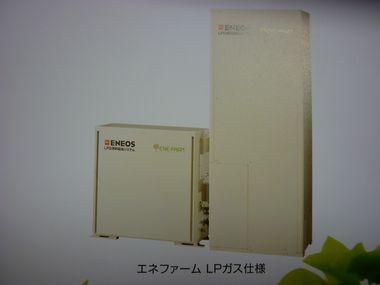 P1080188.jpg