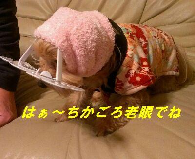 IMG_2013010317288.jpg