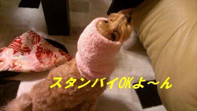 IMG_2013010355145.jpg