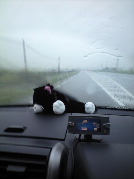 突然の激しい雨・・・多いよね