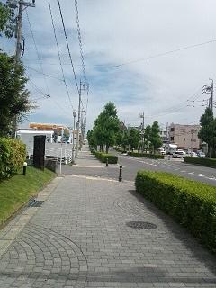 DSC_0614.jpg