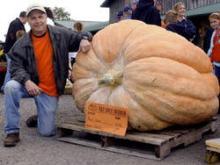 かぼちゃ世界大会