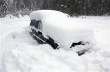 自分なりの判断のご紹介-雪中二か月