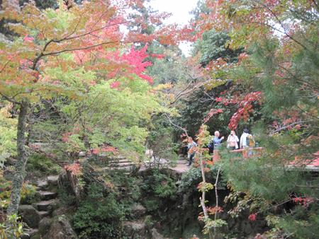 miyajima20141106.jpg