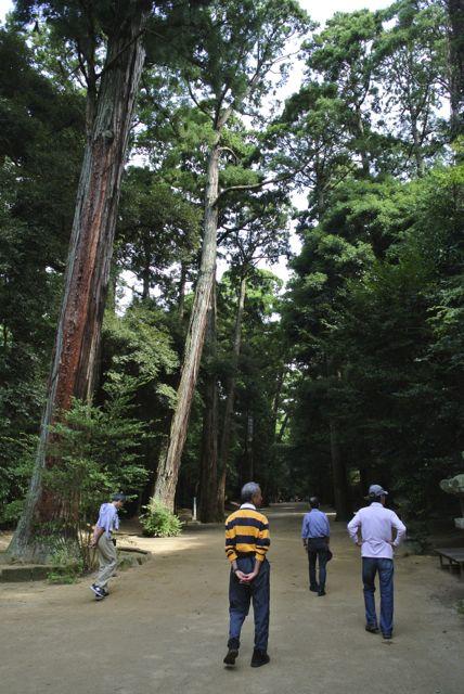 DSC_2292鹿島神宮