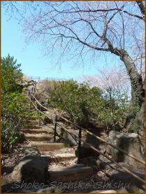 20130322 1 階段 箱根山