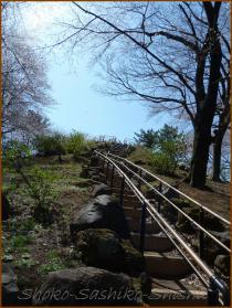 20130322 2 階段 箱根山