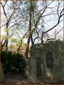 20130322 石の標識 箱根山