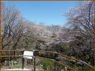 20130322 1 頂上 箱根山
