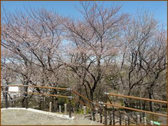 20130322 2 頂上 箱根山