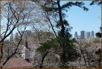 20130322 新宿 頂上 箱根山