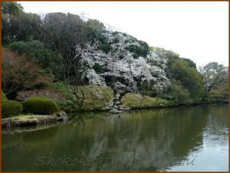 20130329 新江戸川橋公園 1