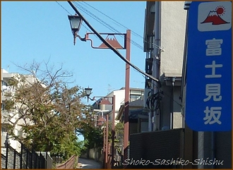 20141119 富士見坂 1 友来る