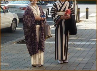 20141124 着物 2 歌舞伎