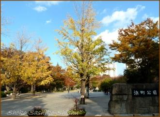 20141124 浜町公園 歌舞伎