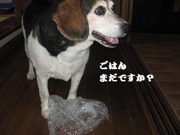 010_20120719223253.jpg
