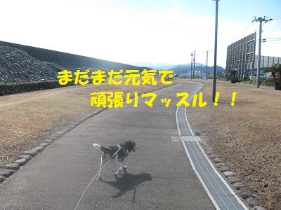 022_20121231222750.jpg