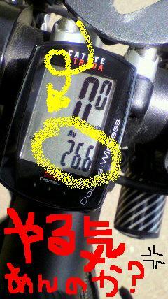 DSC60000.jpg