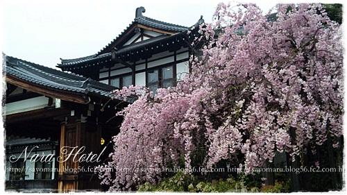 sayomaru3-755.jpg