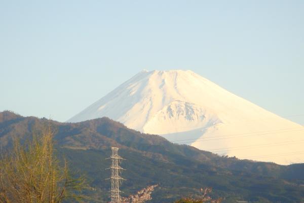 朝撮り富士