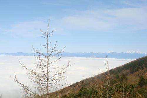 518富士山