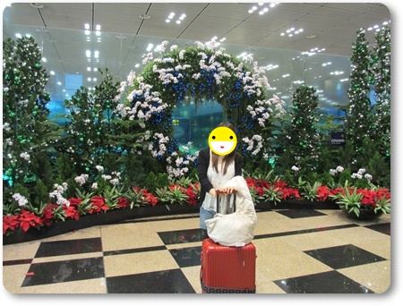 チャンギ空港パブリックエリア,チャンギ空港エアアジアの乗り継ぎ