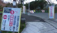 桜2013青葉城脇櫓3