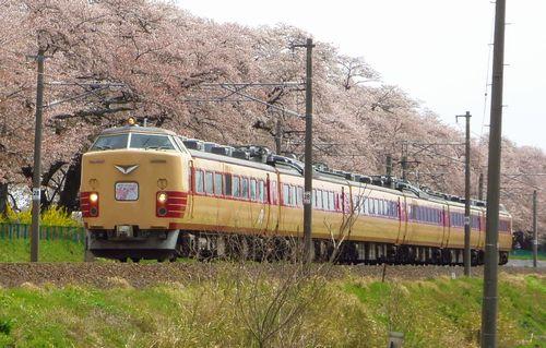 桜2013一目千本桜8船岡東北本線