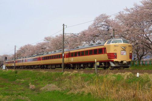 桜2013一目千本桜9船岡東北本線