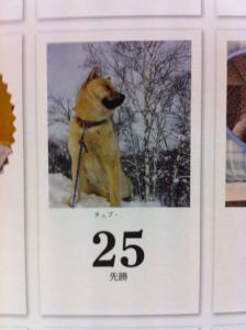 13チュプカレンダー