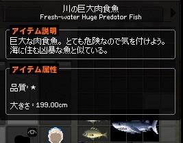 mabinogi_2013_01_11_001.jpg