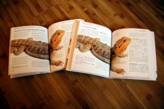 web_agohige_book2.jpg