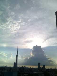 11-11-09-11_1642.jpg