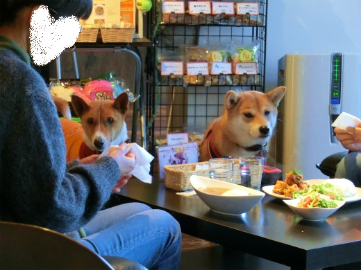 食べたいの・・・
