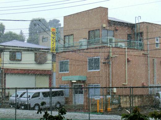この大雪・・・