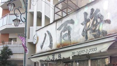 hannoushigai_seichi05_00j.jpg