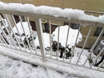 東京地方は朝から雪が凄いですね