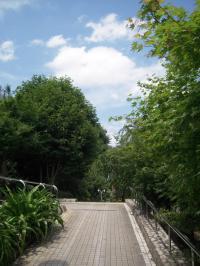 散歩最後DSCN2990_convert_20120630192617