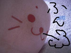 しろたん顔文字DSCN2856_convert_20120707231052