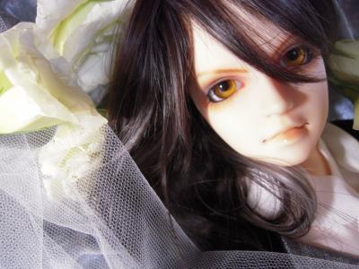 棺2DSCN3674_convert_20120801233943