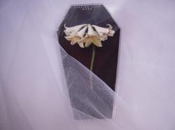 棺8DSCN3696_convert_20120802010710