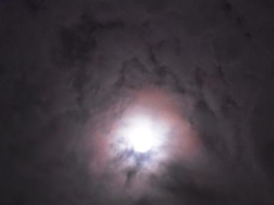 天使7DSCN5576_convert_20120929222559