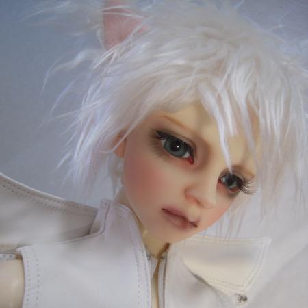 猫8サイズDSCN7113_convert_20121121175743