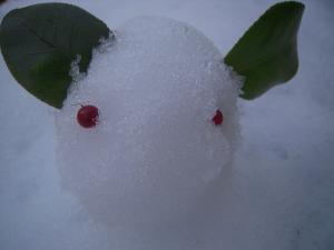 雪うさぎ1 130115141100